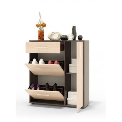 Шкаф для обуви ТП-4 основное изображение