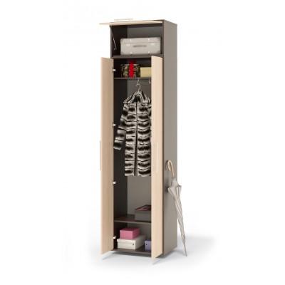Шкаф распашной ШО-1+ШН-1 основное изображение